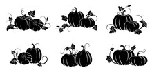 Pumpkin. Set Of Silhouettes Of...
