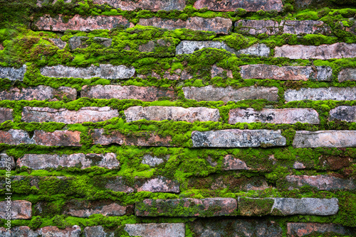 Fototapeta pattern of  bricks with old green rustic moss grass obraz