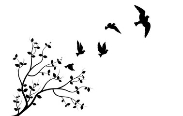 Panel Szklany Ptaki Flying Birds on Branch, Wall Decals, Three Birds Three Design, Couple of Birds Silhouette. Art Design, Wall Decor isolated on white background