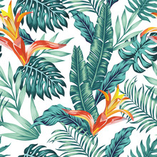 Seamless Pattern Tropical Leaves Flowers White Background