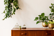 Nice And Retro Space Of Home I...