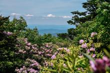 Grayson Highlands State Park I...