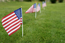 Memorial Day Flags. American Flag On Green Grass Lawn Background
