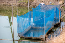 Fish Cage Floating In River Us...