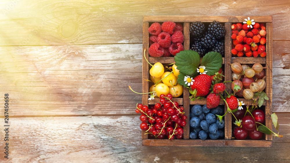 Fototapety, obrazy: Assorted berries in box.