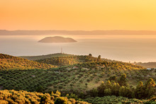 Hazy, Golden Hour View Of Olive Plantation Above The Sea And Distant Turtle Island In Greece