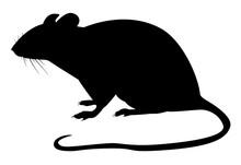 Motif Noir D'un Rat Sur Fond Blanc
