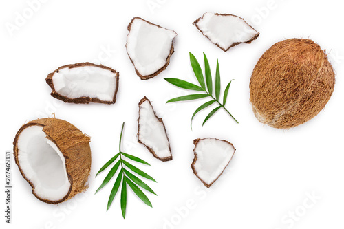 Fototapeta coconut with leaves isolated on white background