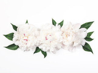 Three white peony flowers and leaves on white background. Top view. Flat lay.