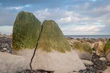 A Large Cracked Rock On A Sussex Beach At Low Tide