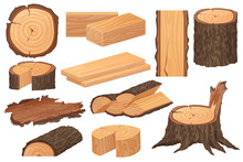 Wood Industry Raw Materials. Realistic High Detailed Vector Production Samples. Tree Trunk, Logs, Trunks, Woodwork Planks, Stumps, Lumber Branch, Twigs.