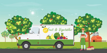 Fresh Fruit Delivery Car With ...