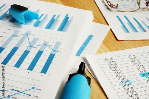 Business assessment concept. Financial reports for auditing. Wallpaper Mural