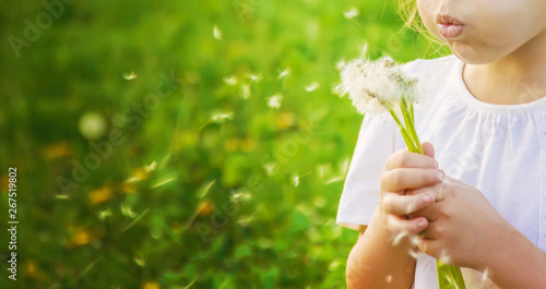 Obraz girl blowing dandelions in the air. selective focus. - fototapety do salonu