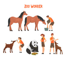 Zoo Workers Feeding And Caring...