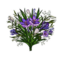 Vector Illustration Of Easter Floral Bouquet Of Lilies And Crocuses With Bow In Vintage Style Isolated On White