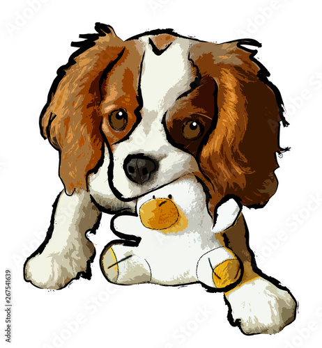 Photo chiot cavalier king charles