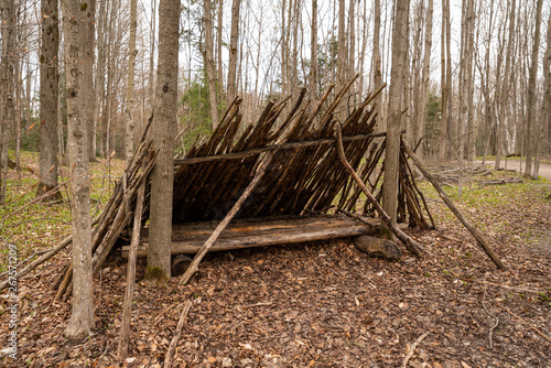 lean to in a forest - shelter from the weather Fototapeta