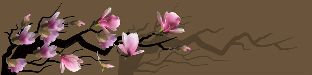 Panel Szklany Do kuchni pink blossoming branch of magnolia on brown