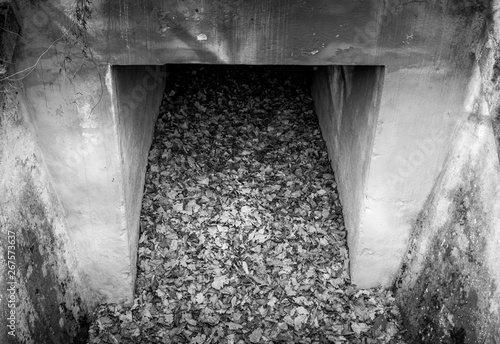 Greyscale image of an old concrete culvert Canvas-taulu