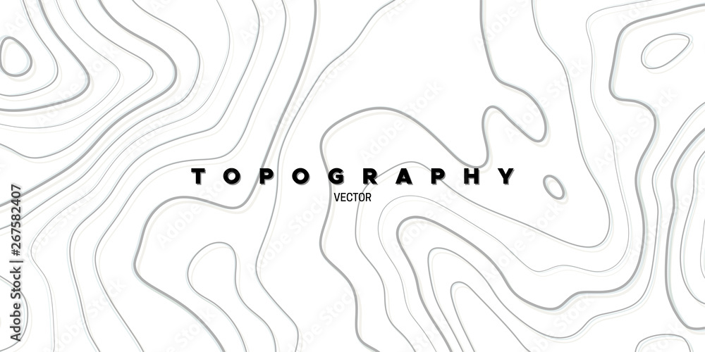 Fototapety, obrazy: Topography relief. Abstract background. Vector illustration. Outline cartography landscape. Modern poster design. Trendy cover with wavy lines