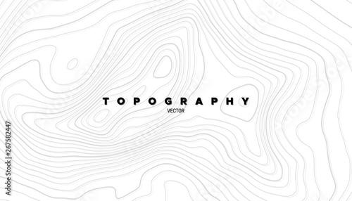 Fototapeta Topography relief