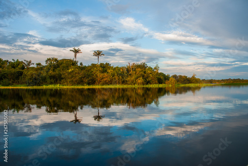 Extraordinary beautiful landscape with views of the Amazon river and the jungle Tablou Canvas