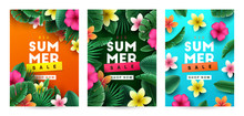 Summer Background With Tropica...