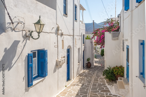 Canvas Prints Narrow alley View of a typical narrow street in old town of Naoussa, Paros island, Cyclades