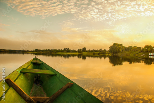 Foto auf Leinwand Honig Beautiful sunrise on the river. View from the boat at Amazon river, with a dense forest on the shore and blue sky, Anazonas, Brazil