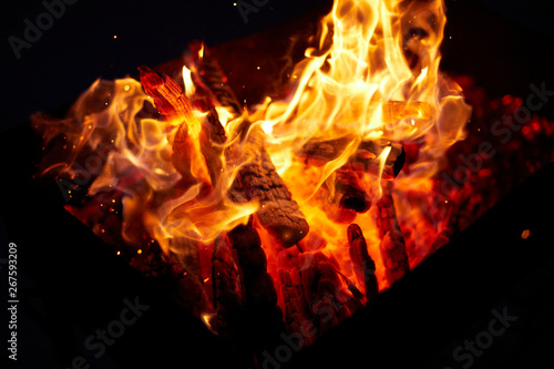 Wall Murals Flame Firewood burning on black background
