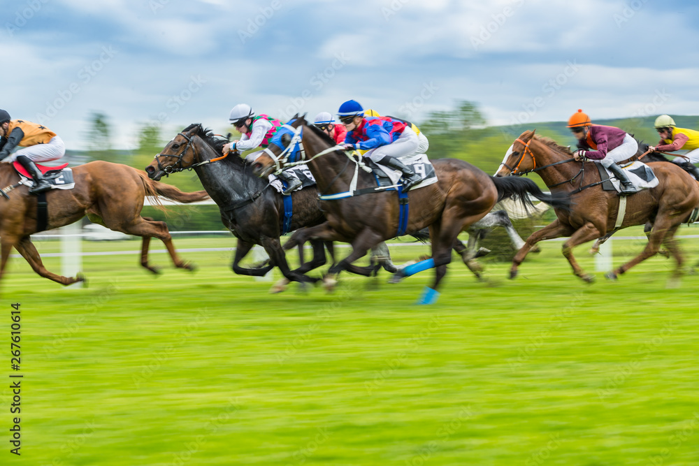 Fototapety, obrazy: Horse racing outdoor derby