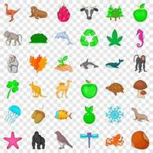 Animal Species Icons Set. Cartoon Style Of 36 Animal Species Vector Icons For Web For Any Design
