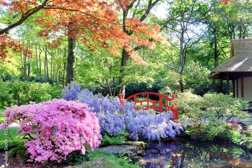 Printed kitchen splashbacks Khaki Japanese garden