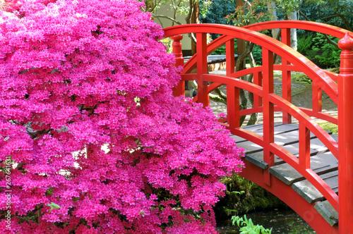 Poster Roze Japanese garden