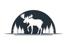 Moose Wild Animal