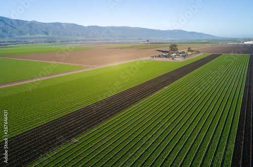 Leinwand Poster Aerial view of agricultural fields in California