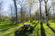Beautiful resting place with wooden furniture by springtime in a bright backlit forest