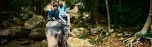 Tourist Couple Riding Elephant...