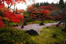 Quiet Autumn In The Garden At ...