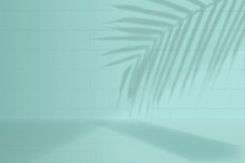 Tropical Product Background