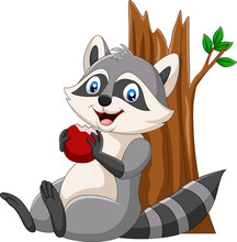 Cartoon Raccoon Eating A Red Apple