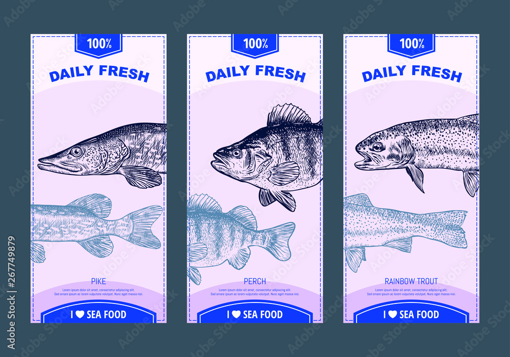 Fototapety, obrazy: Sea food banners set. Hand drawn sea animals. Template for your design works. vector illustration.