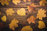 Autumn leaves on rustic wooden background. Top view with copy space. - 267760888