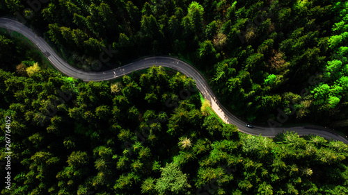 Winding rural road trough forest. Aerial top down drone view - fototapety na wymiar