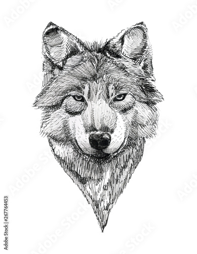 Obraz na plátně  Black Ink Tattoo Hand Drawn Wolf Portrait