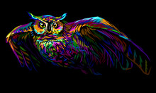 Long-eared Owl In Flight. Abstract Multicolored Image On A Black Background.