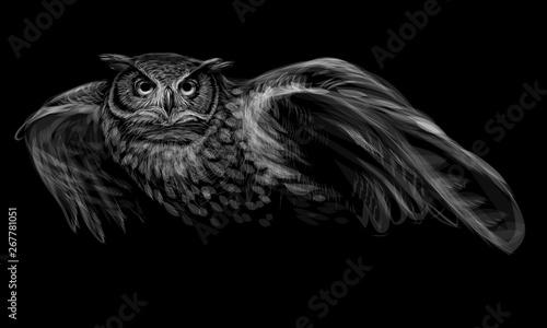 Cadres-photo bureau Croquis dessinés à la main des animaux Long-eared owl in flight. Monochrome image on black background.