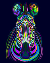 Abstract Multicolored Portrait Of Zebra Head On Blue Background