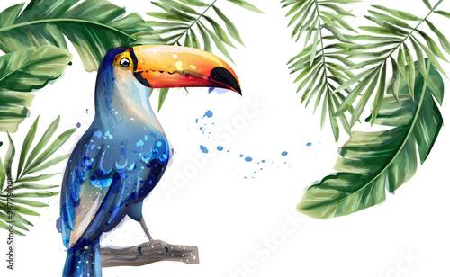 Fotografie, Tablou  Toucan Vector watercolor